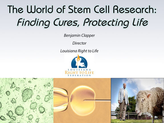 Stem Cell Title Page